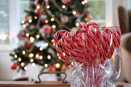 candy, candy canes, christmas and december