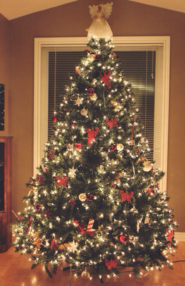 background, christmas, christmas tree and december