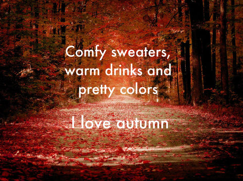 autumn, coffee, drinks, warm