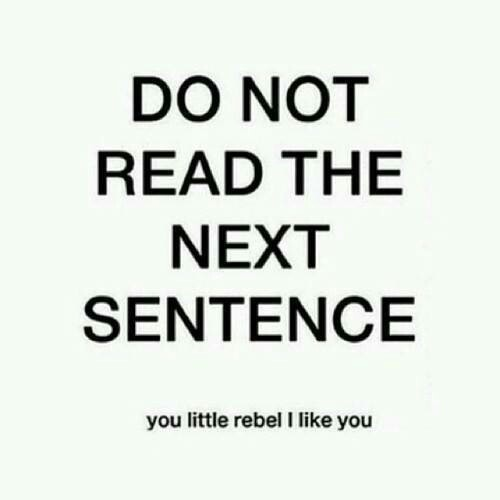 quote, i like you, rebel, humor, words, read, hilarious ...