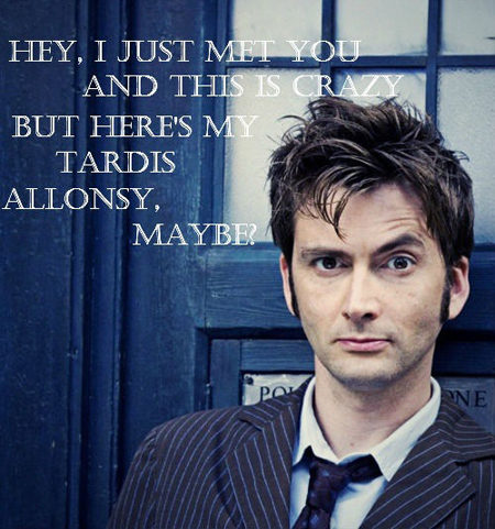 david tennant, doctor who, funny, parody, tardis, tenth doctor, allonsy