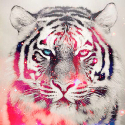 Hipster tiger face - photo#25