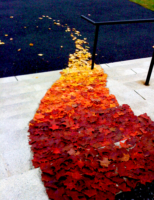 autumn, colors, fall, girly, inspiration, leaf, leaves, nature, ombre, orange, outdoors, red, trail, tumblr, yellow