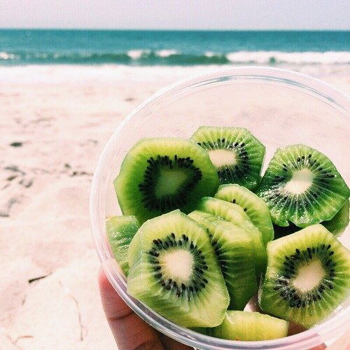 beach, cup, fruit and green