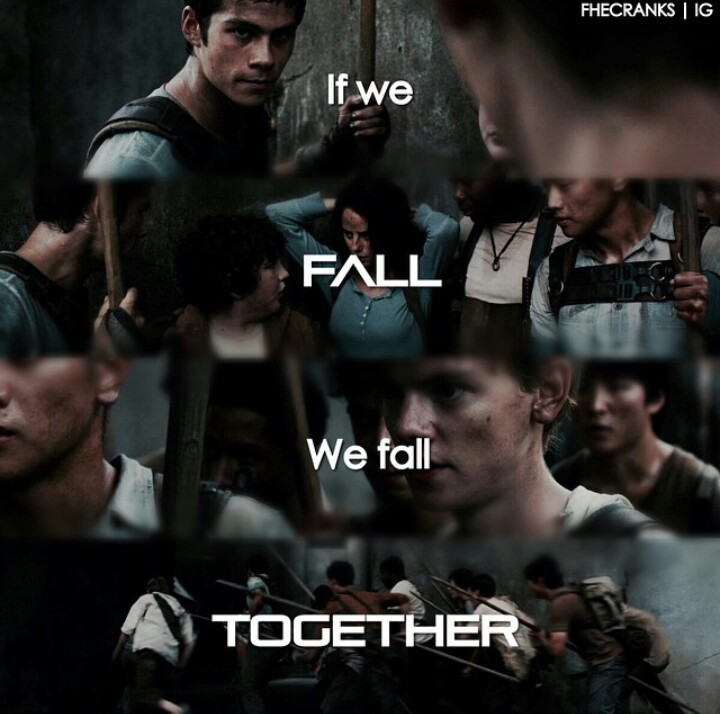 boys, chuck, fall, fan, fandom, film, glade, hope, insta, instagram, maze, minho, movie, movies, run, runner, runners, teenagers, teresa, thomas, together, tst, tmr, newt, alby, mazerunner, gladers, tdc