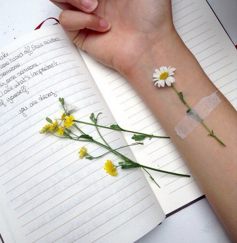 flower, notebook and write
