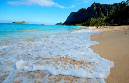 beach, sand, summer, tropical