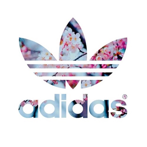 adidas, baskets, brand and clothes