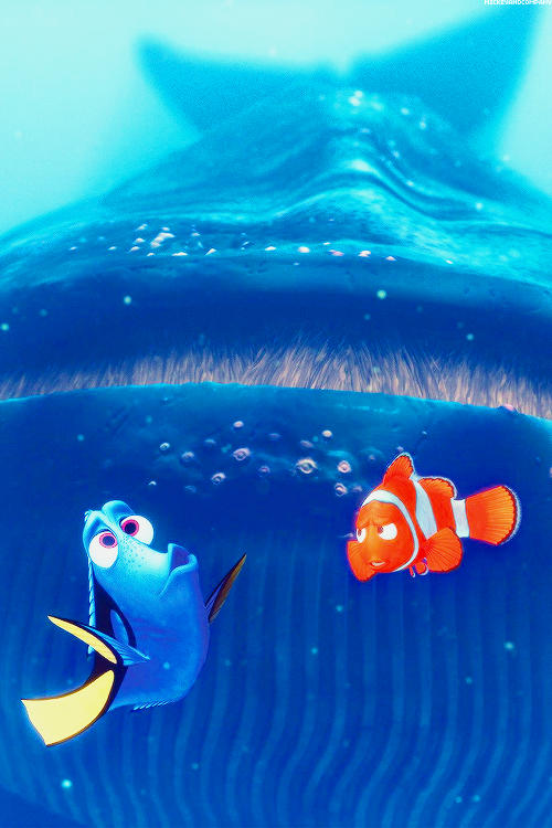 cute, disney, finding nemo and photography