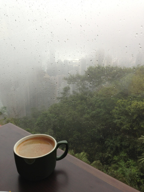coffee, cold, cup, fog, forest, mist, nature, rain, trees, winter, woods