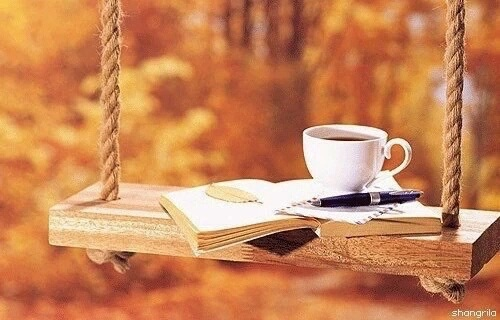 Image result for love books beautiful