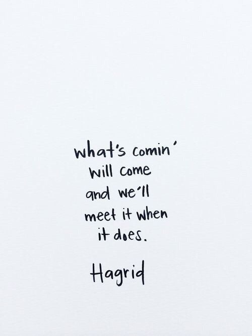 always, amazing, book, books, coming, future, grey, hagrid, love, movie, movies, quote, true, truth, ️harry potter