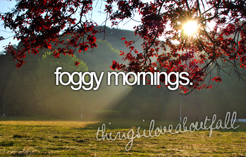autumn, dew, fall, foggy, grass, just girly things, leaves, love, morning, tumblr, tumblr posts, foggy morning, thingsiloveaboutfall, love about fall, fall mornings