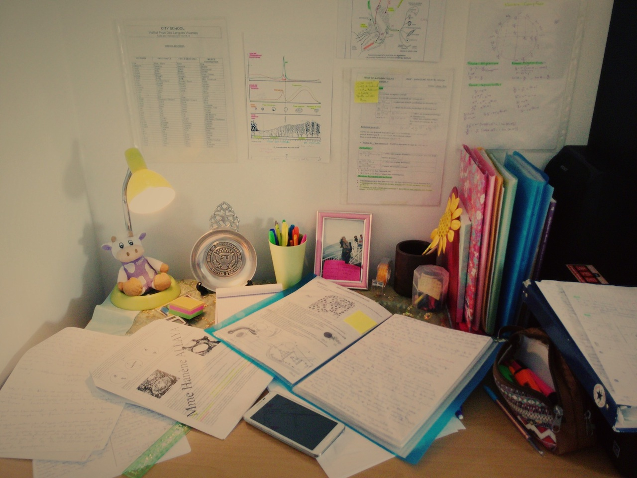 colours, hard, inspiration, learning, love, motivation, science, studies, study, studying, tunisia, working