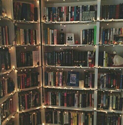 author, book, bookcase, books, bookshelf, chapter, character, characters, fan, fandom, library, light, lights, read, reading, shelfs, story, books and coffee, shelve, shelf.shelves