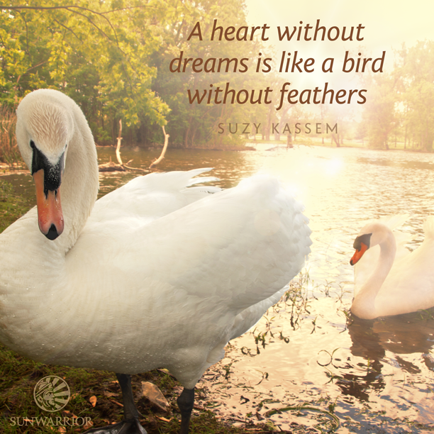 bird, dreams, feathers and heart