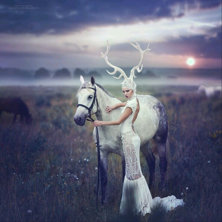fantasy, horns, horse, magic, photography, stuff, white