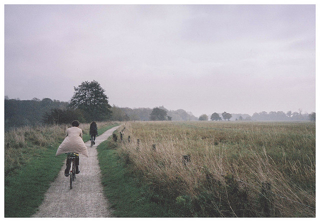 adventure, bicycle, bike, boy, field, grass, nature, wander