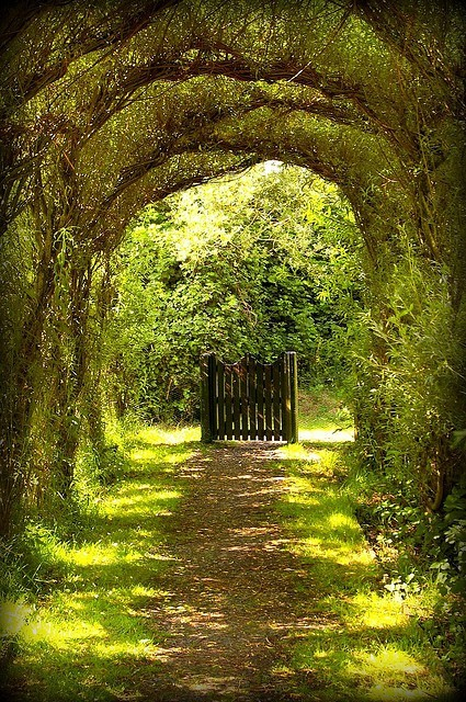 arch, gate, green, outdoors, trees