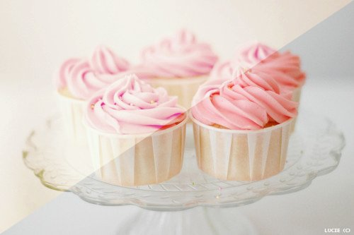 cup cake, cute stuff, glossy, kawaii, kawaii food