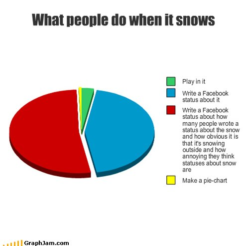 facebook, funny, people, pie, snow
