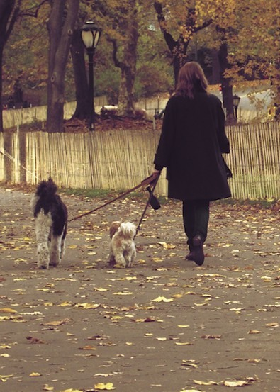 alberto reyes, central park, cool, dogs, fashion