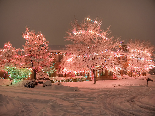 amazing, cold, cristmas, light, lights, lovely, photography, snow, winter