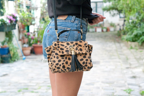 animal print, bag, classy, cute, fashion, girl, girly, legs, leopard, leopard print, lovely, pretty, shorts, street, style, summer
