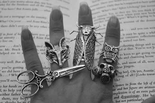 animals, black and white, book, double ring, fashion