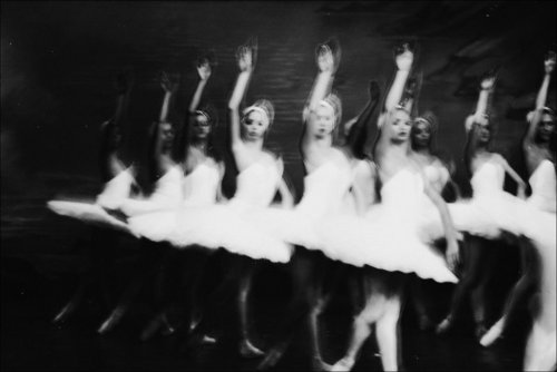 ballerina, ballerinas, ballet, black and white, dance