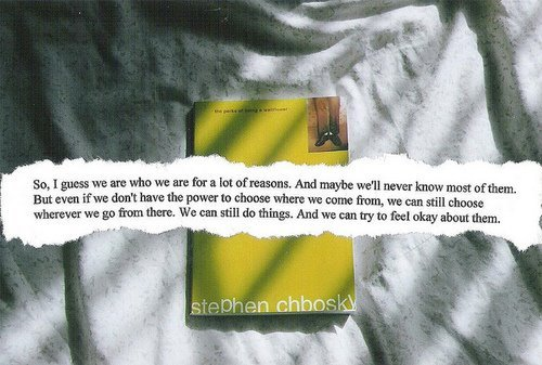 book, photography, stephen chbosky, text, the perks of being a wallflower, things