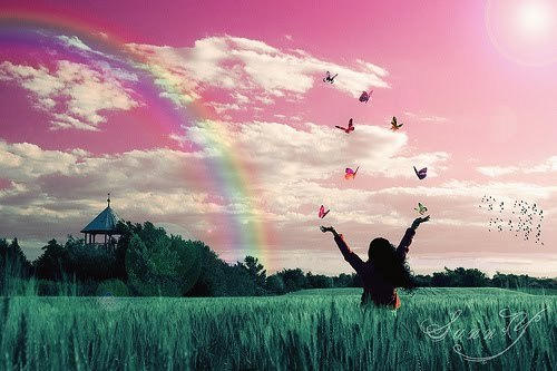 butterflies, girl, rainbow