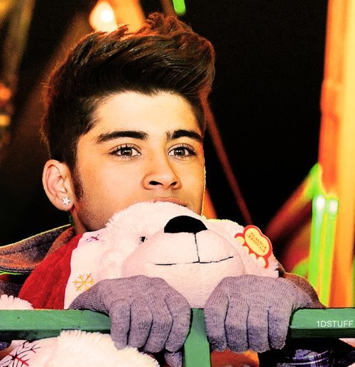 one direction, puppy, zayn malik