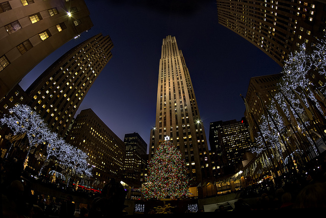 america, beautiful, beauty, christmas, city