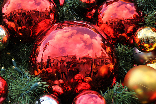 art, beautiful, beauty, christmas, cute, disney, disney land, light, nature, photography, pretty, sweet