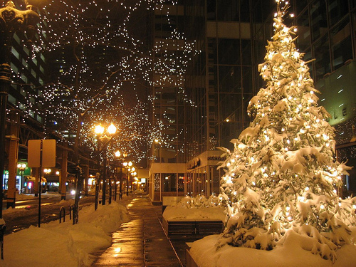 beautiful, beauty, christmas, cute, light, lights, nature, photography, pretty, sweet, tree