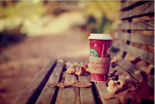 bench, christmas, cute, grkglorg, starbucks