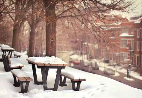 benches, buildings, christmas, cold, cute, december, outdoors, park, photography, pretty, snow, street, trees, vintage, white, winter