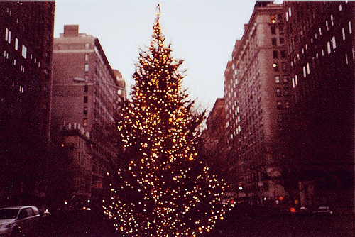 christmas, christmas tree, city, december, holidays