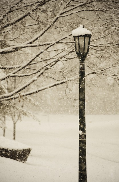 christmas, cold, light, narnia, nature, snow, street lamp, street light, trees, winter