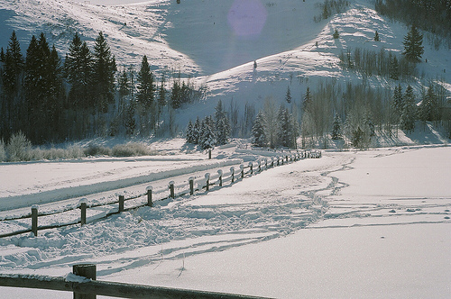 christmas, december, mountain, nature, photography, snow, trees, winter