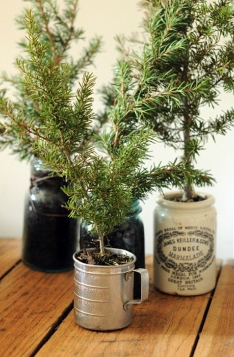christmas, diy, ever green, evergreen, hoilday, rustic, simple, tree