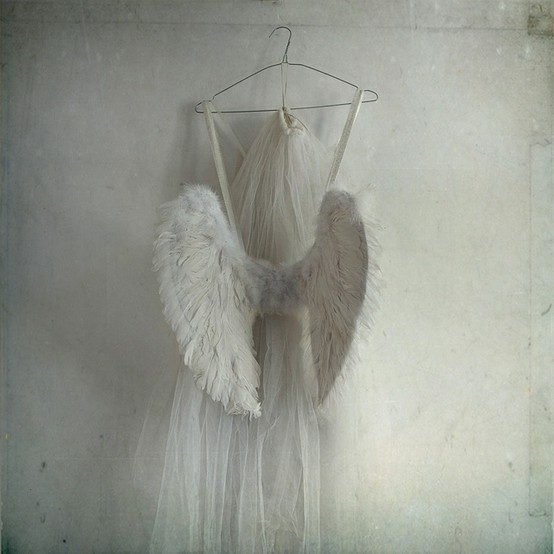 angel, dress, tulle, white, wight, wing, wings