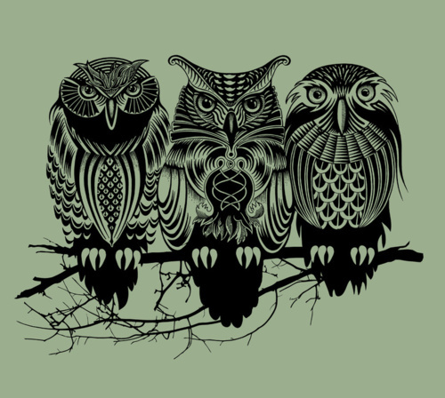 animal, drawing, illustration, nature, owl