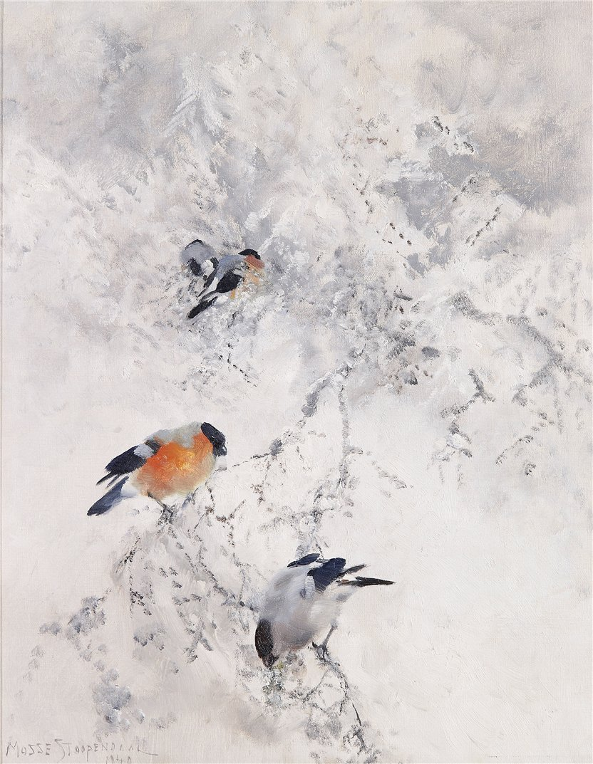 art, birds, bullfinch, christmas, finch