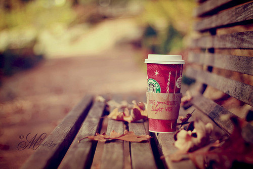 autumn, bench, christmas, coffee, fall, leafs, loneliness, red, starbucks