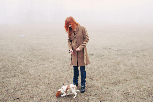 autumn, cavalier, coat, dog, fog, ginger, girl, orange hair, puppy, red head, redhead, winter