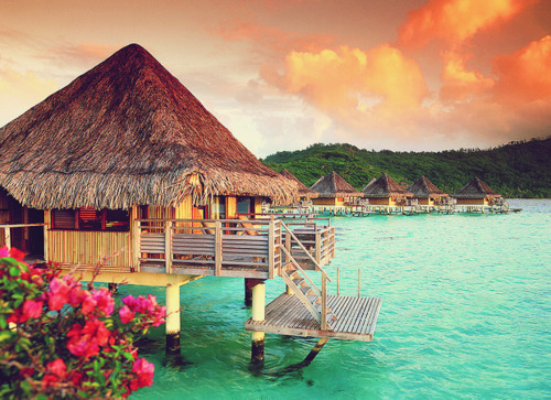 beach, beatiful, beautiful, bora bora, green, hut, nice, photography, pier, pretty, summer, sunset, water, wau