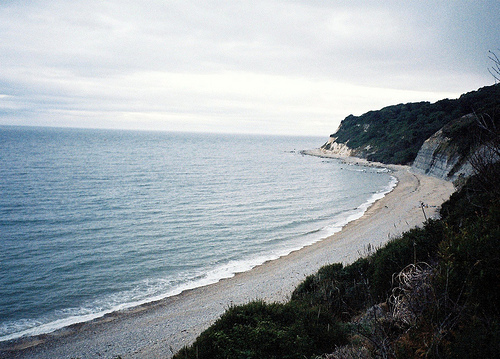 beach, beautiful, cliffs, forest, ocean