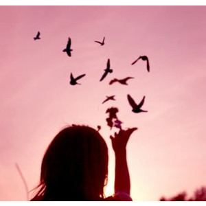 Beautiful Birds Color Girl Pink Image 252381 On Favim Com